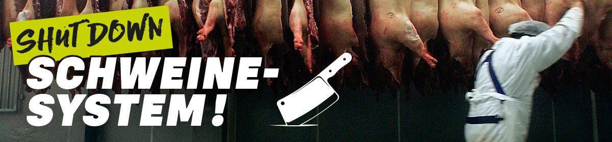 Shut Down Schweinesystem